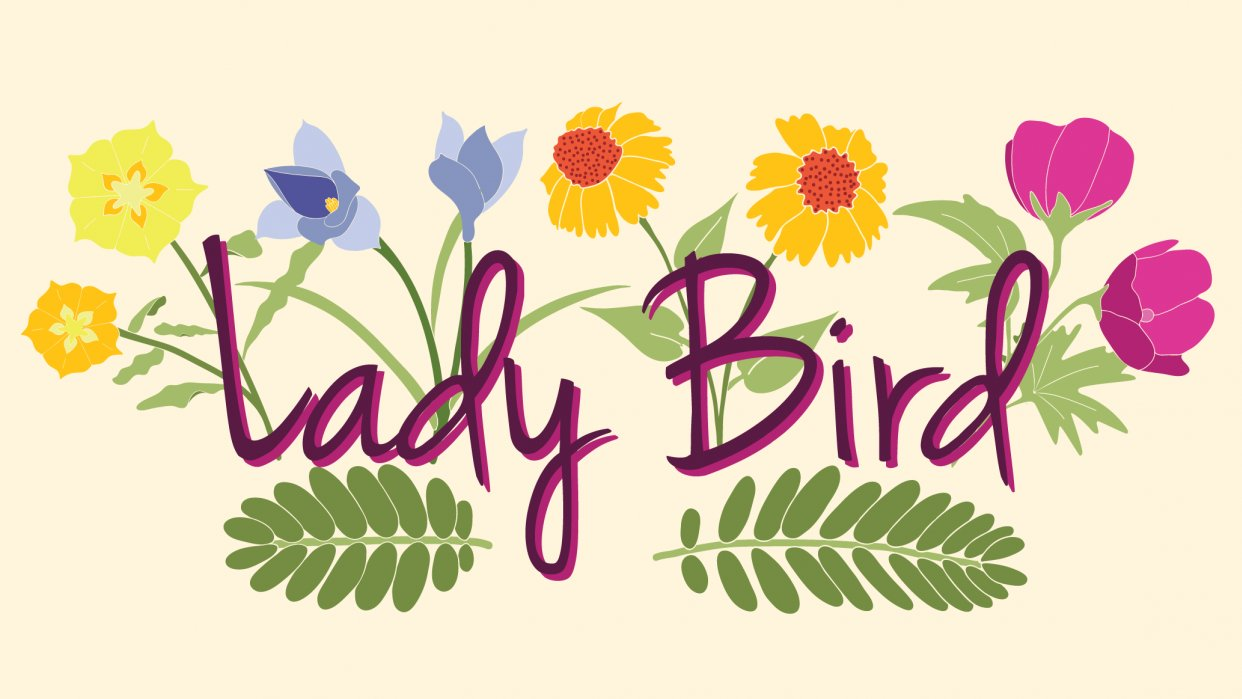 Lady Bird - student project