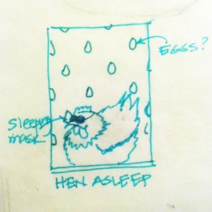 Quiet - Hen Napping - student project