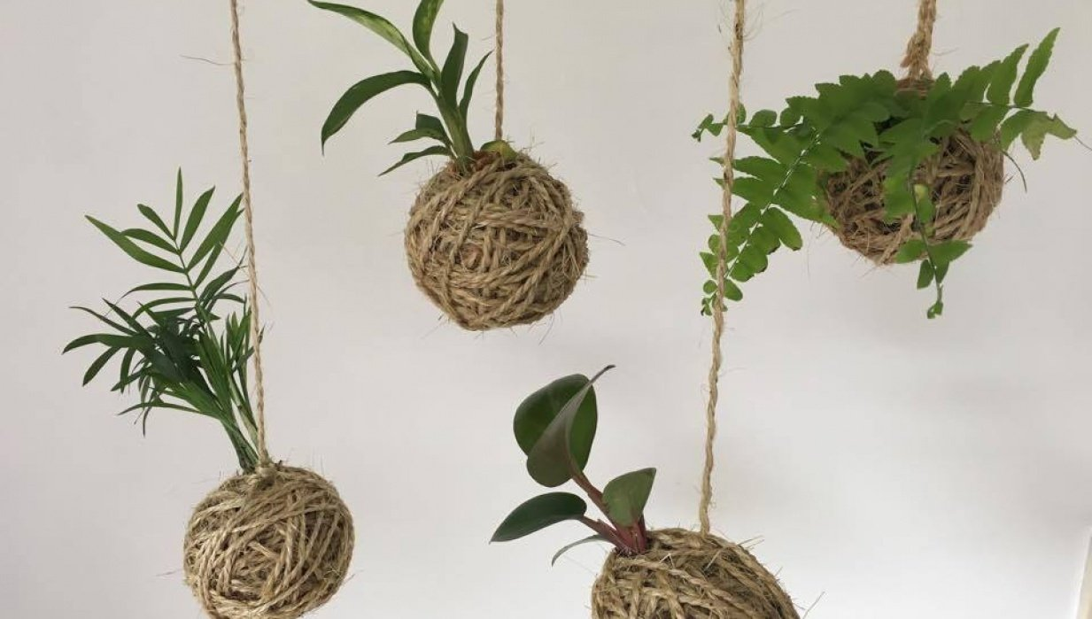 Sample project - create your own kokedama - student project