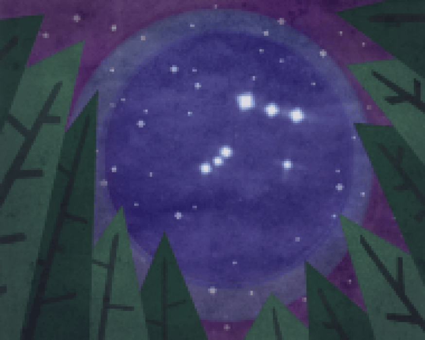 Thetis Island Nights - student project