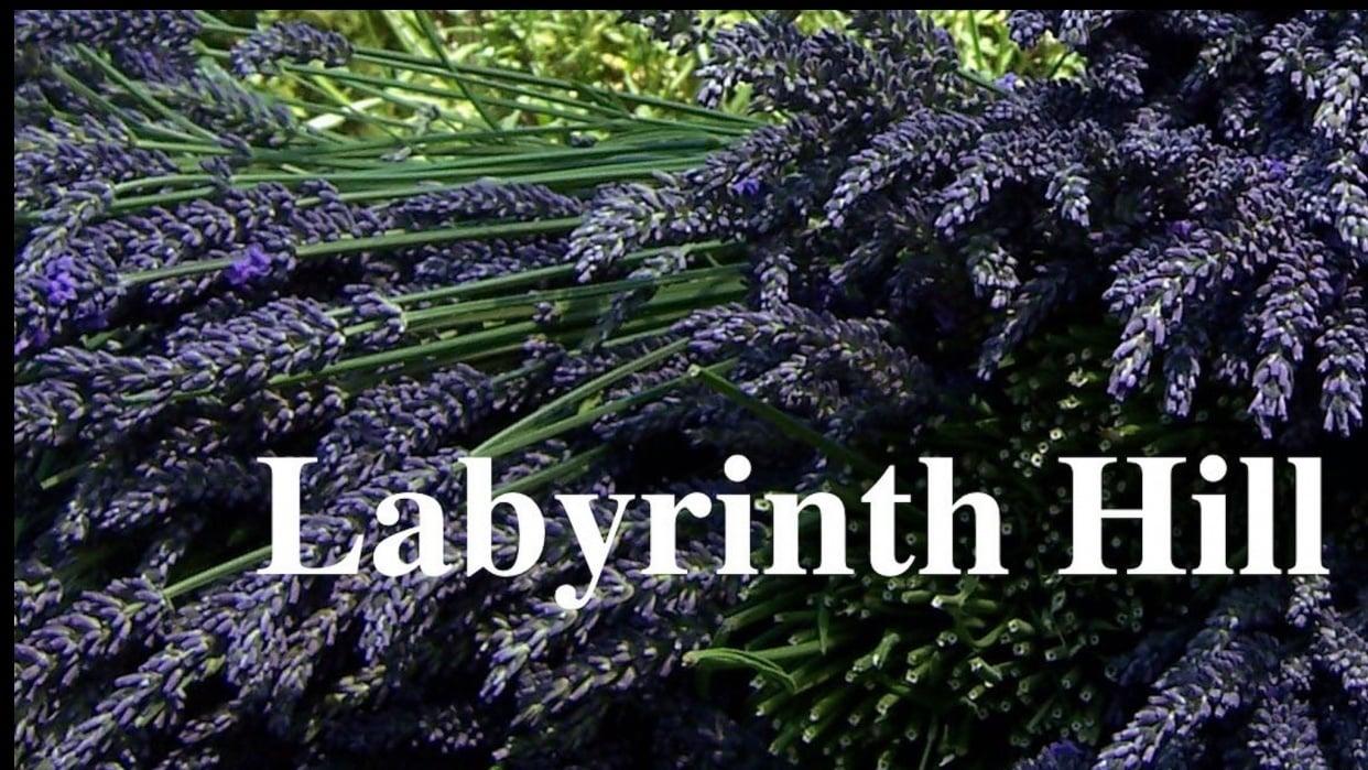 Labyrinth Hill Class Marketing - student project