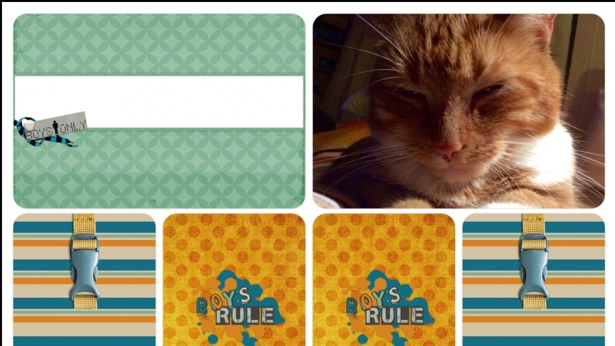 Project Life Cards with a Digital Scrapbooking Kit - student project
