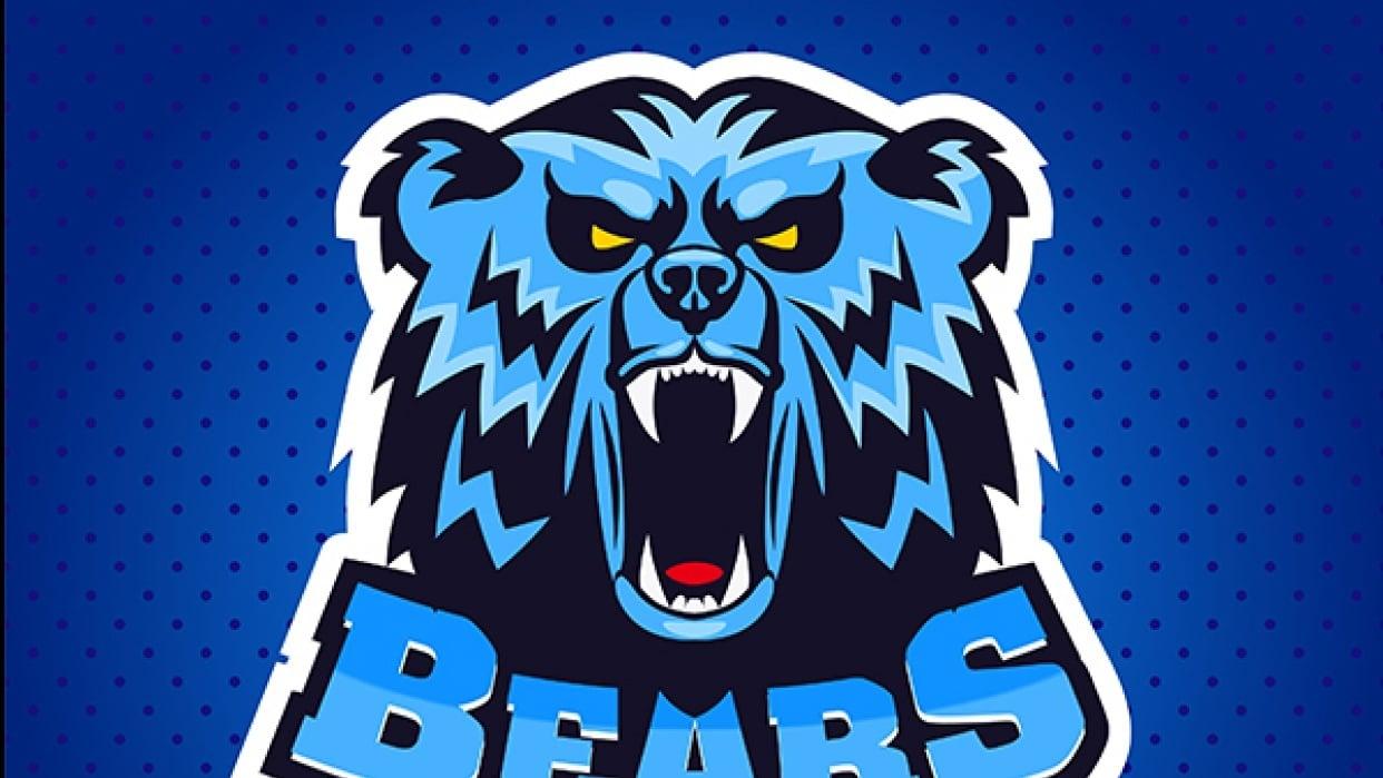 Blue Bear sports logo - student project