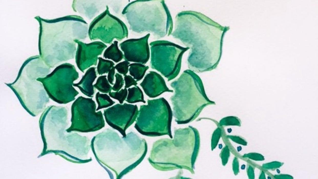 Classic Succulent - student project
