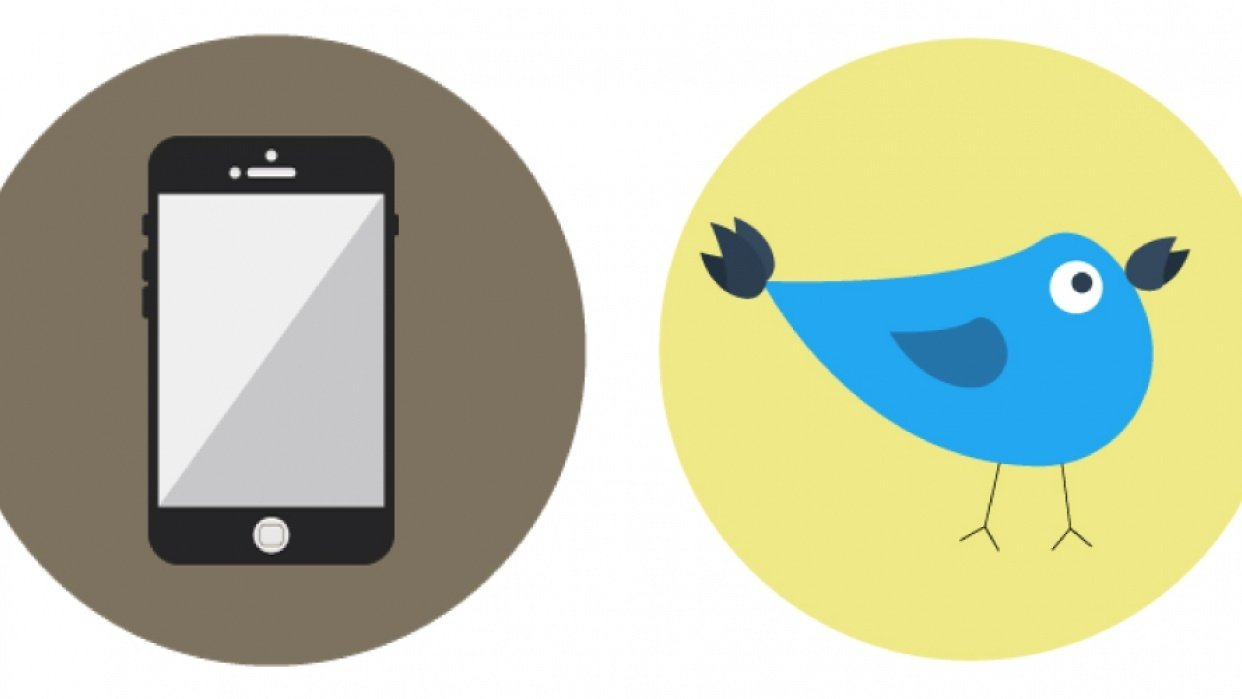 Bird and Phone Icons - student project