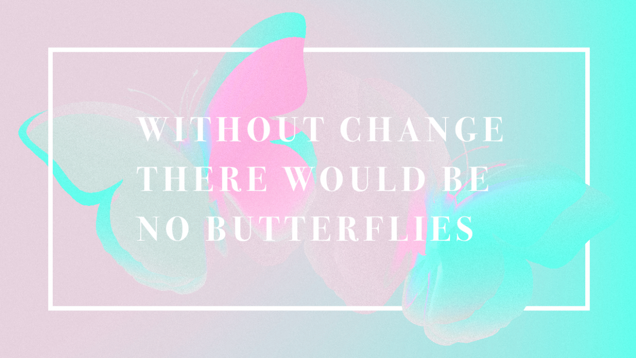 Butterflies (Sample Project) - student project