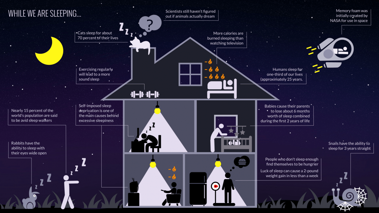 While we are sleeping - A narrative infographic about sleep - student project