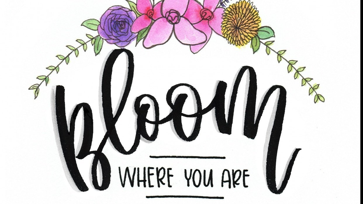 Bloom Where You Are Planted - student project