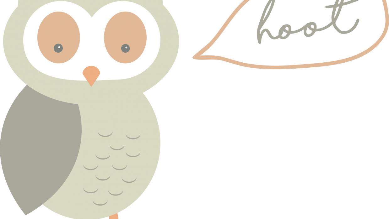 hoot hoot! - student project