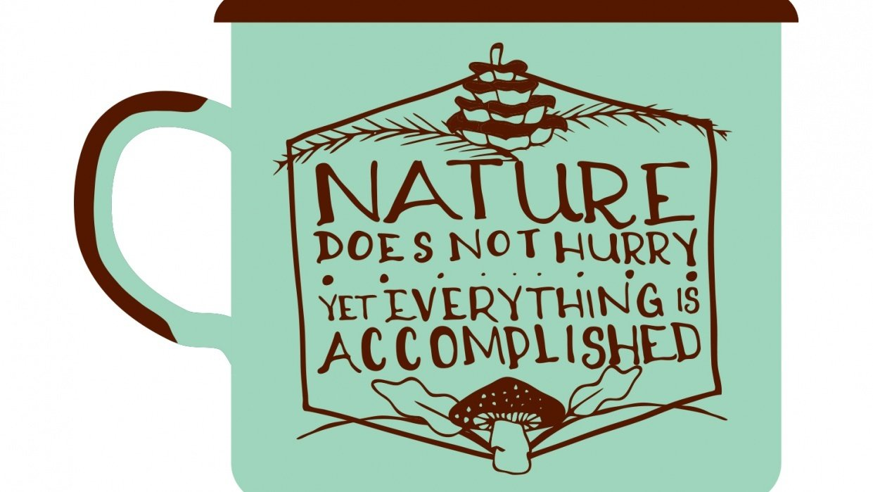 Nature Does Not Hurry - student project