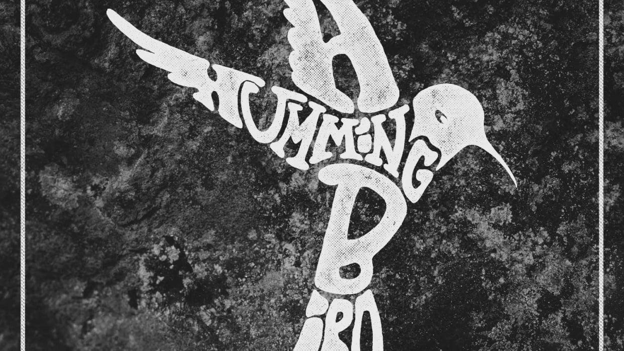 A Hummingbird - student project