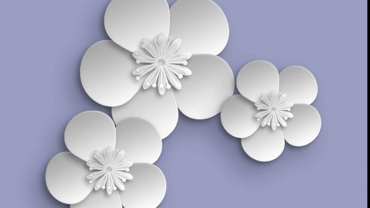 Papercut Flowers - student project