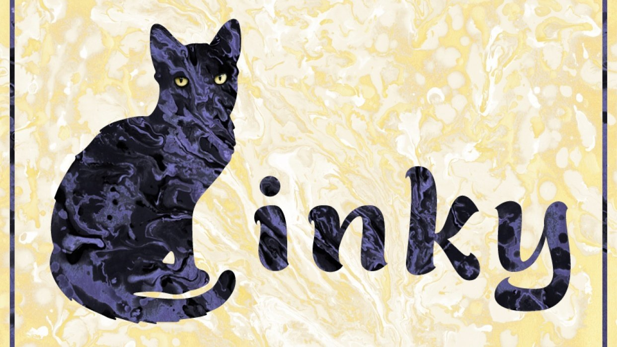 Inky, my first kitty - student project