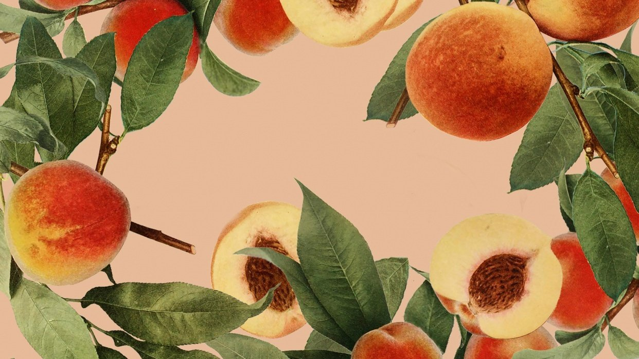 Peaches Everywhere  - student project