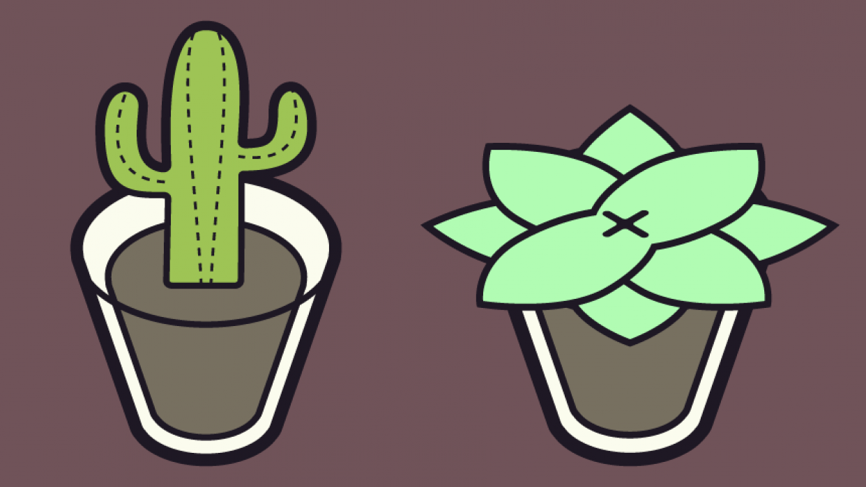 Some plants - student project