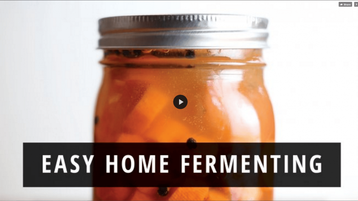 First Skillshare course! Easy Home Fermenting: Preserving Vegetables with Healthy Probiotics - student project