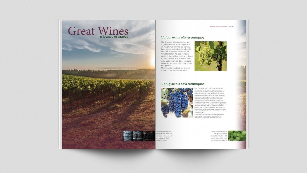 Great Wines - Magazine Spread - student project