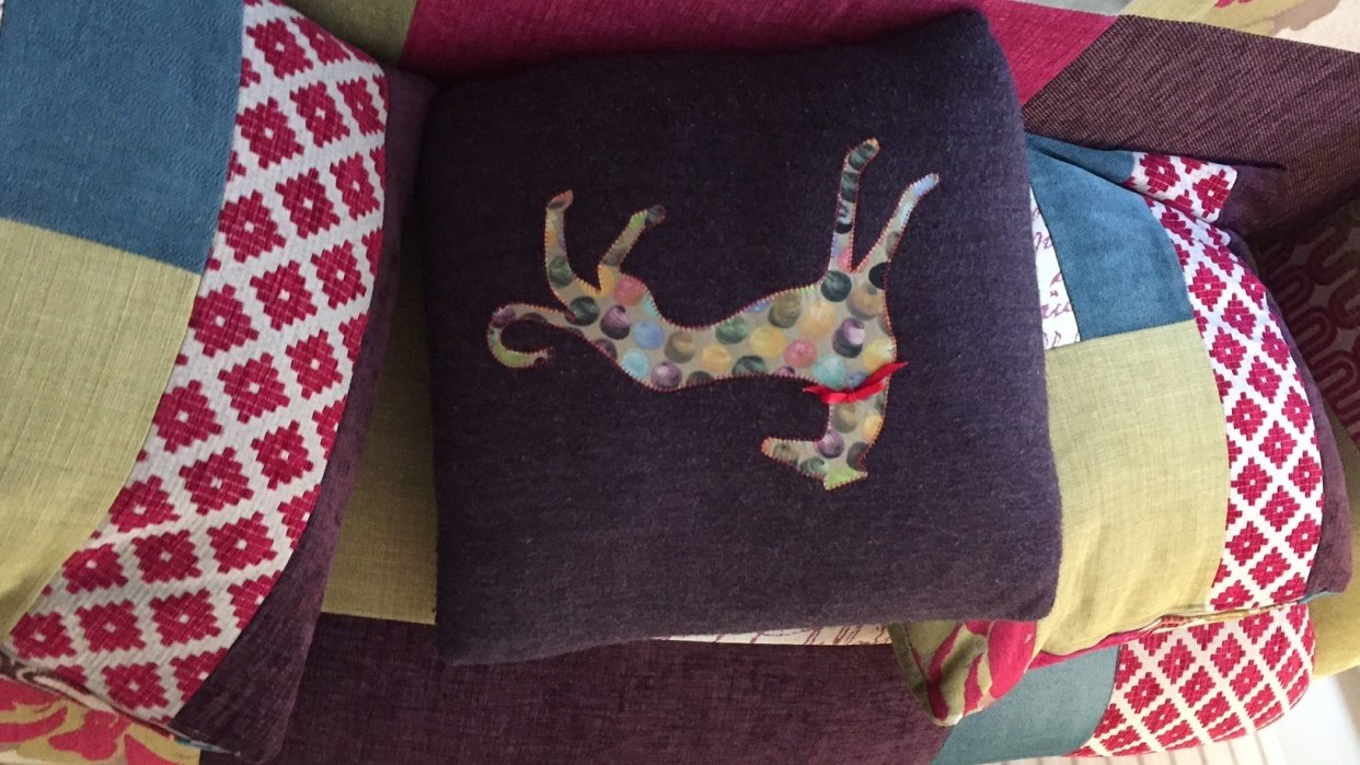 Hector cushion - student project