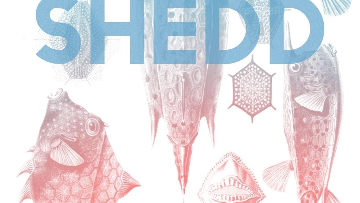 Shedd Aquarium - student project