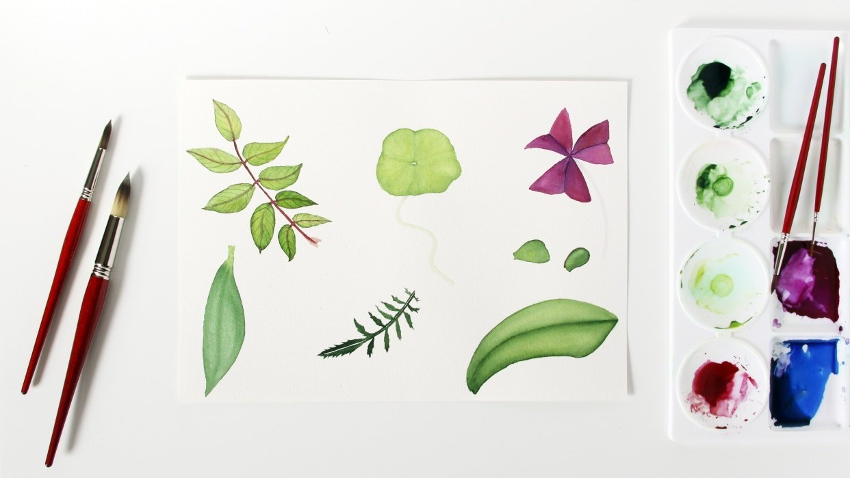 Watercolor Leaves Examples - student project