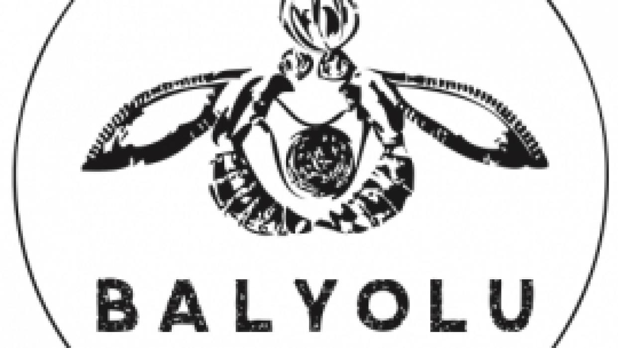 Balyolu Logo Design - student project