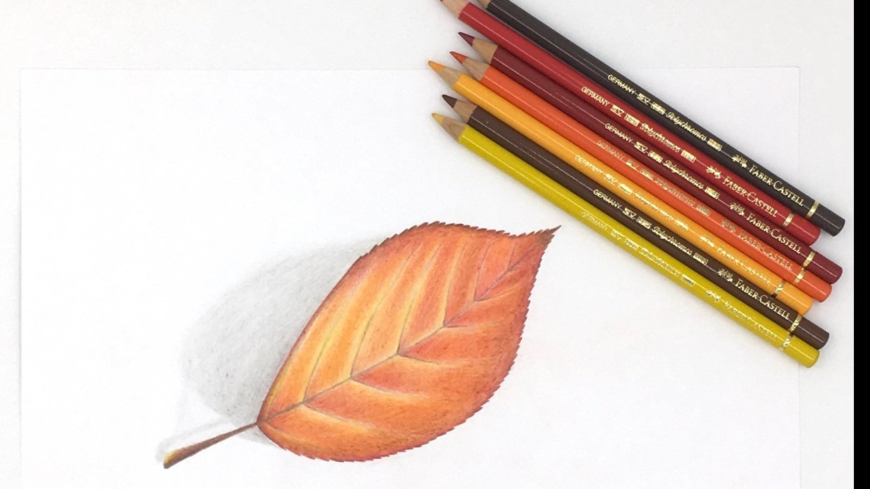 Drawing with Colored Pencils - student project