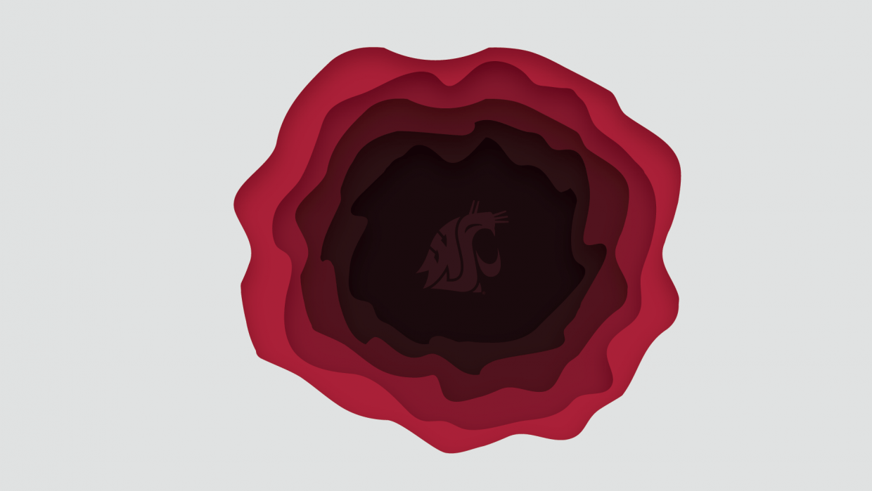 #GoCougs - student project
