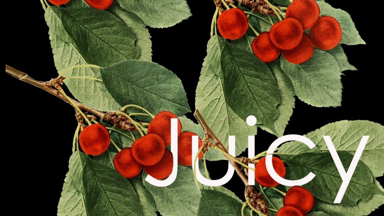 Juicy Bunch - student project