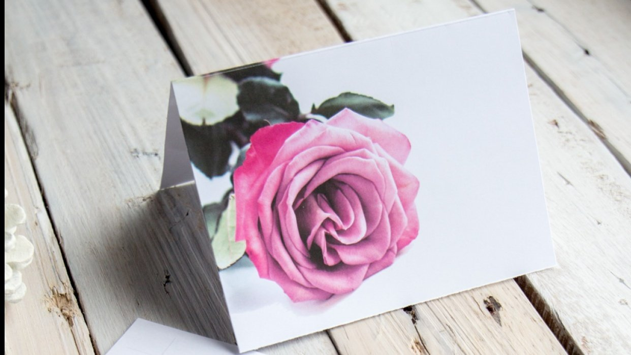 A New Greeting Card Template for Valentines: February Rose! - student project
