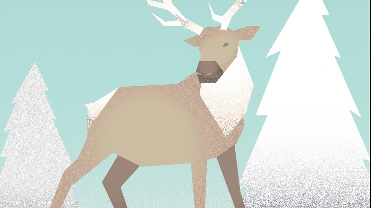 Elk - student project