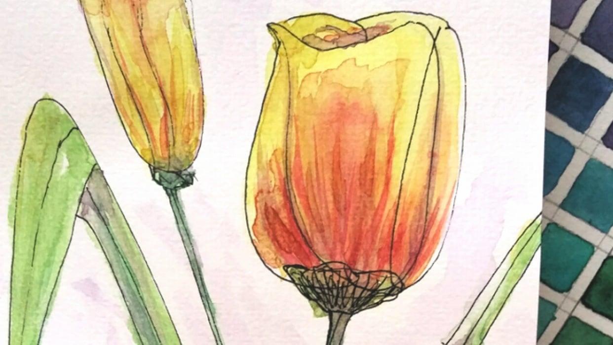 Botanical Sketchbook + - student project