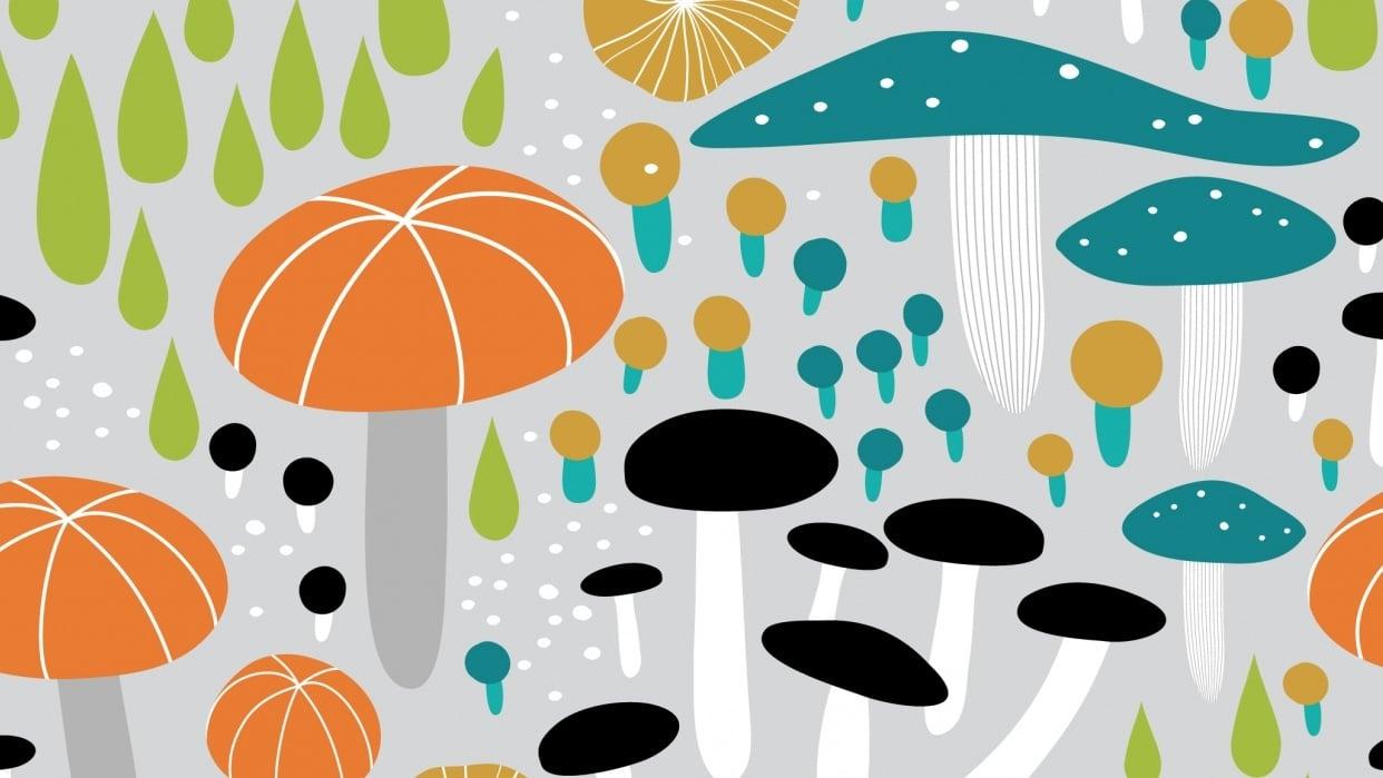 Mushroom Medley - student project