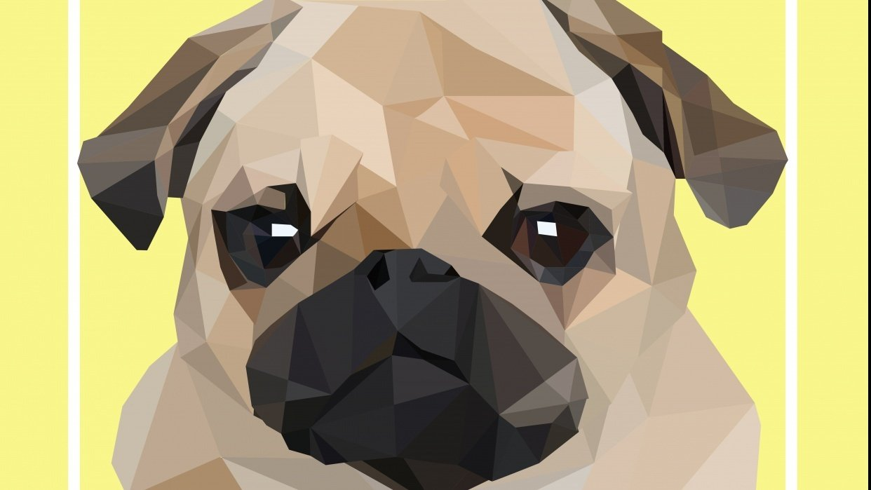Low Poly Pug - student project