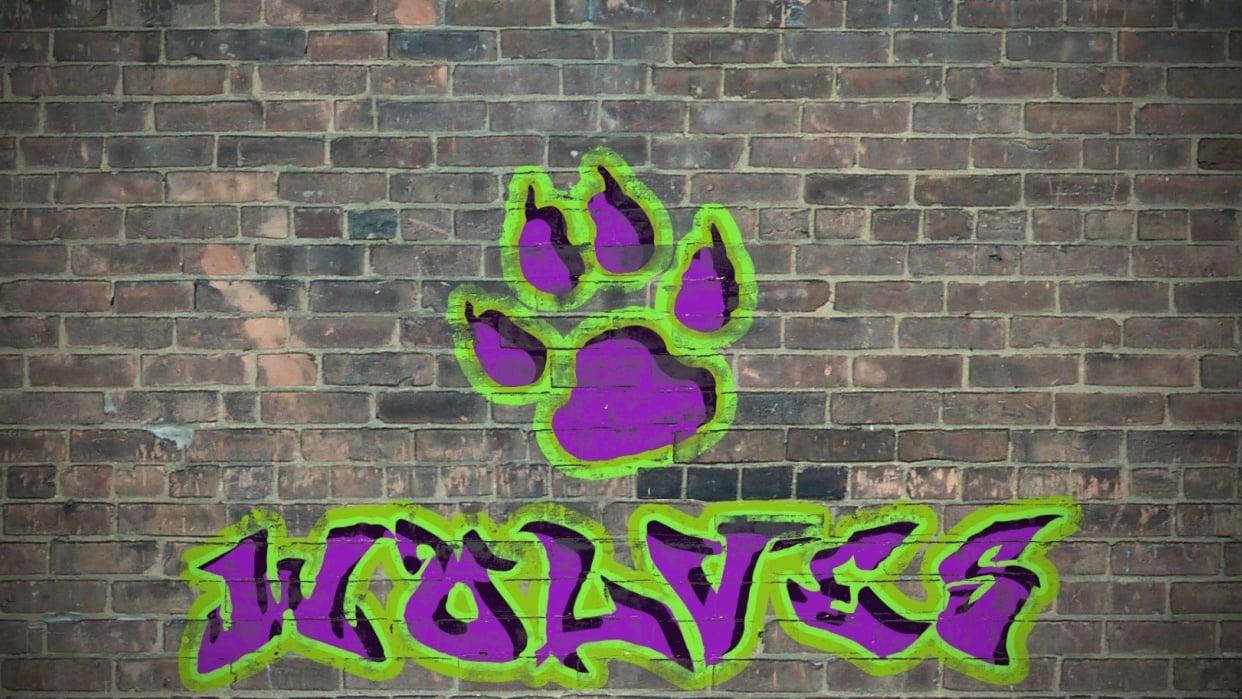 Wolves Graffiti  - student project