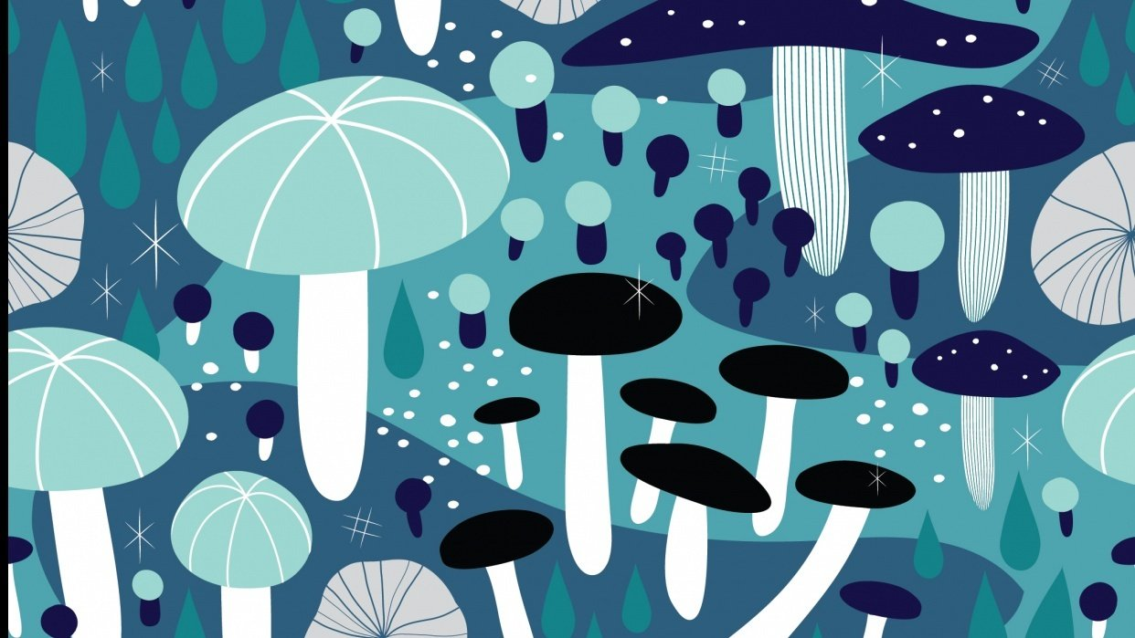 Midnight Mushrooms - student project