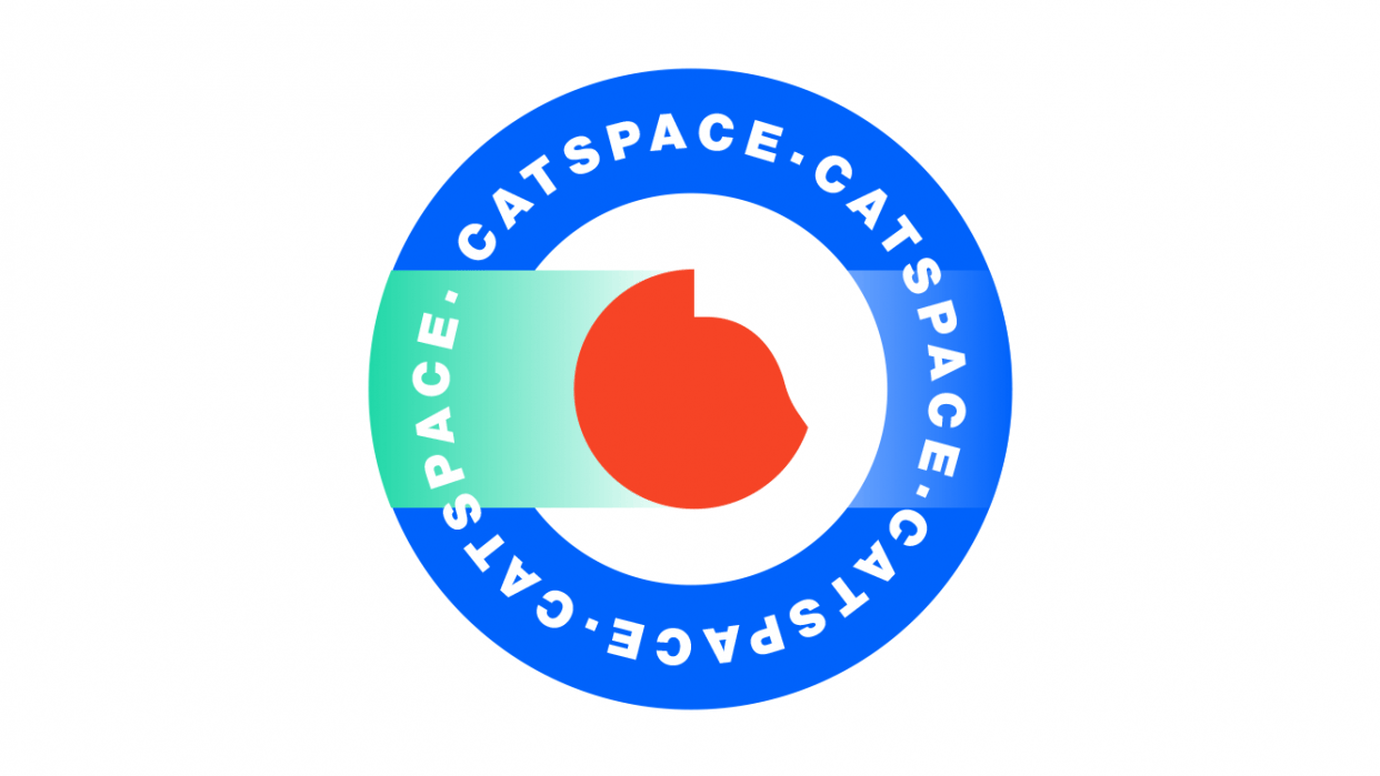 Catspace - student project