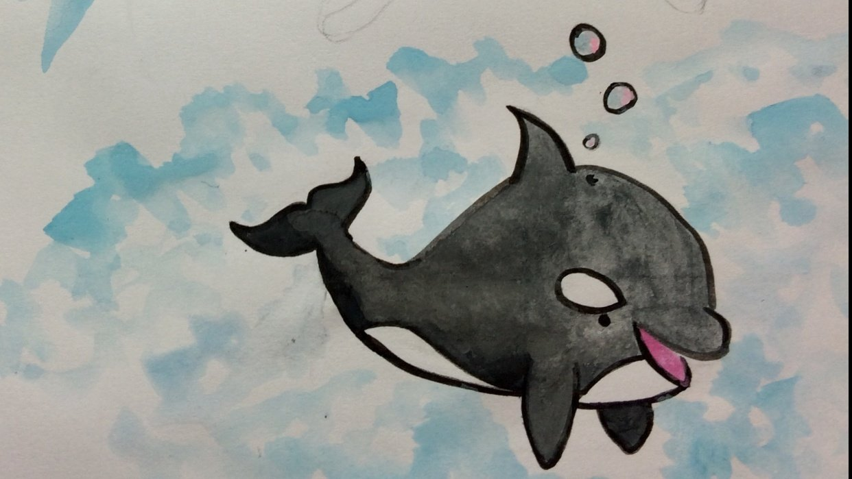 Guinea Pig & Killer Whale Cuties - student project