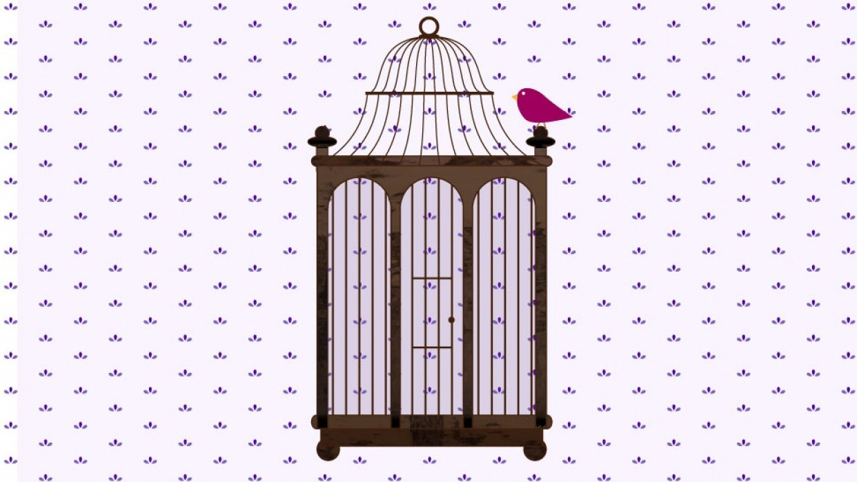 Birdy Cage - student project