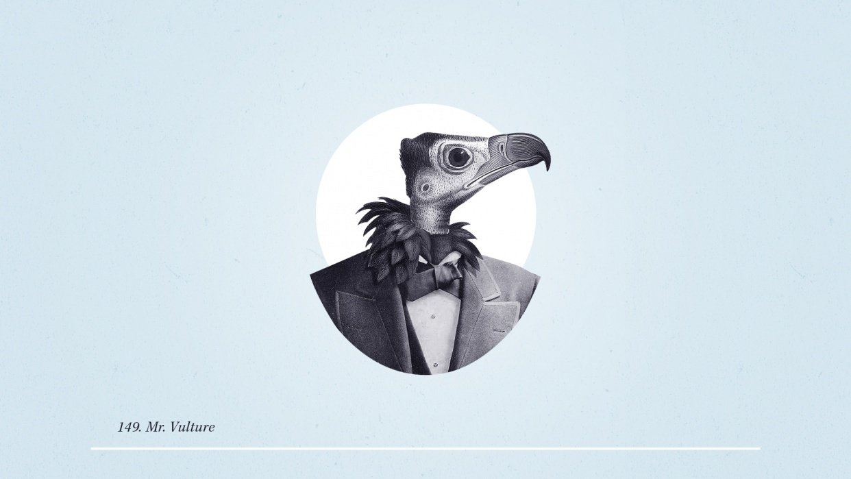 Mr. Vulture - student project