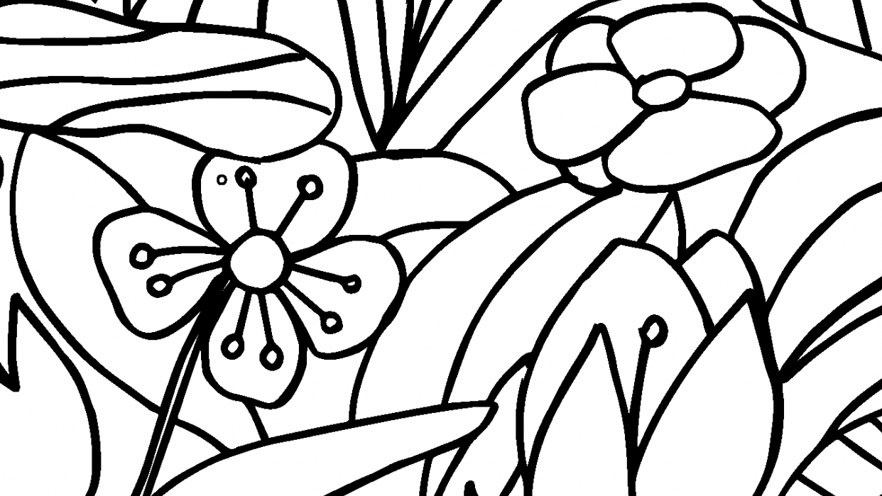 Coloring Book  - student project
