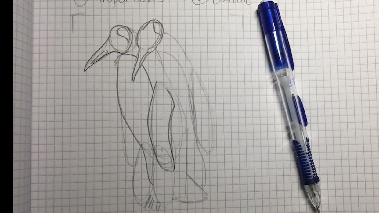 Penguins! - student project