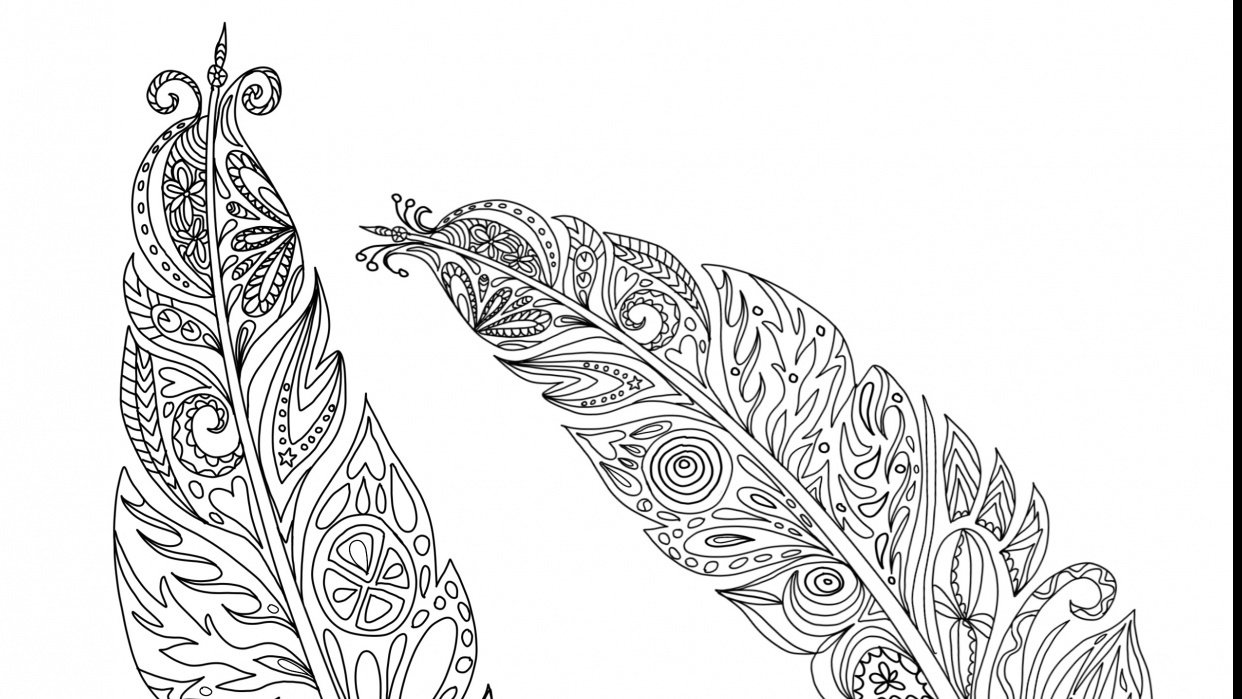 Feathers for coloring book challenge - student project