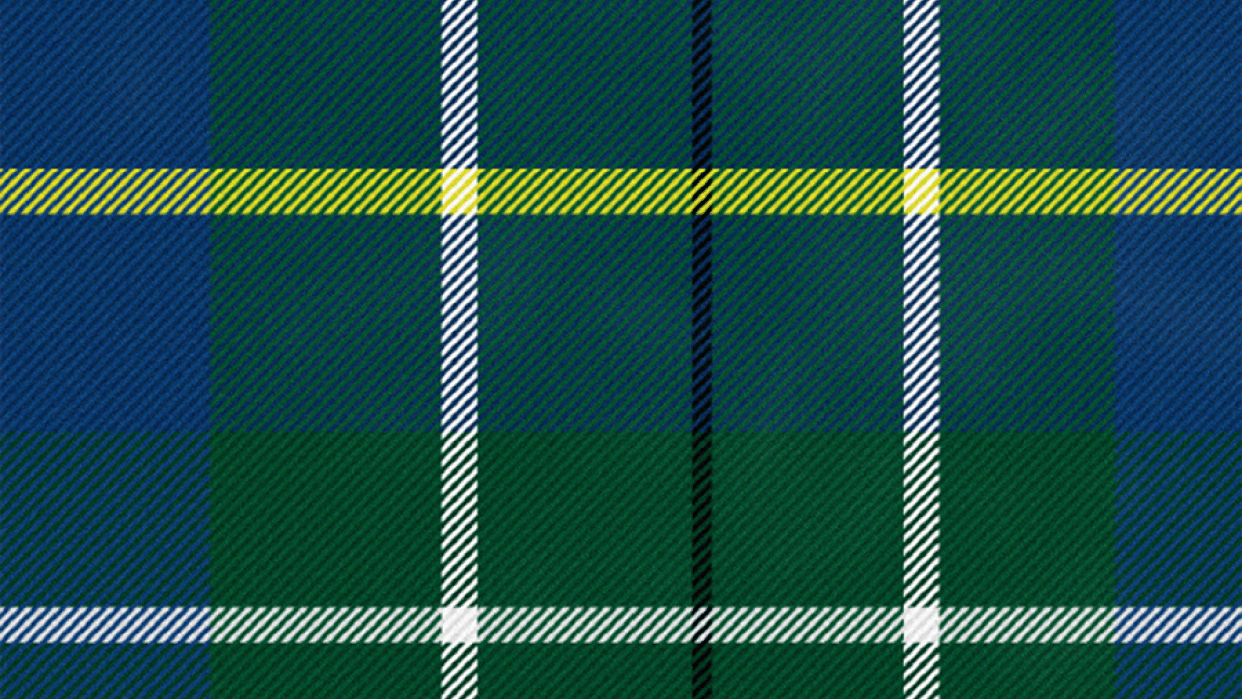 Plaid with Noise - student project