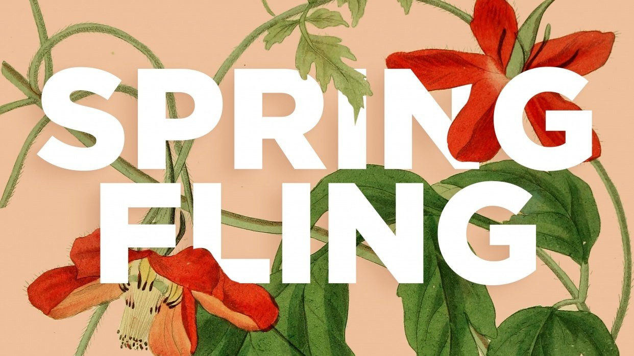 Spring Fling - student project