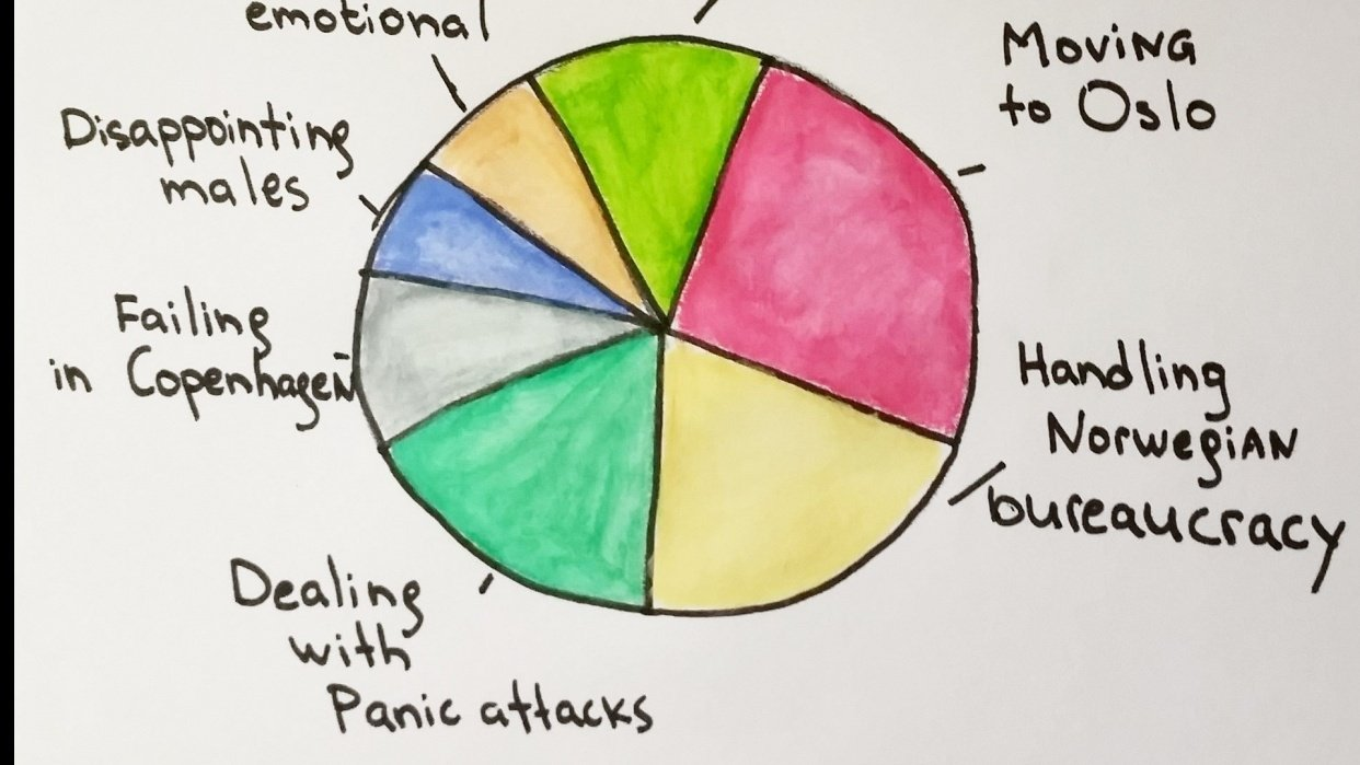 Pie chart of Resilience and my future self - student project
