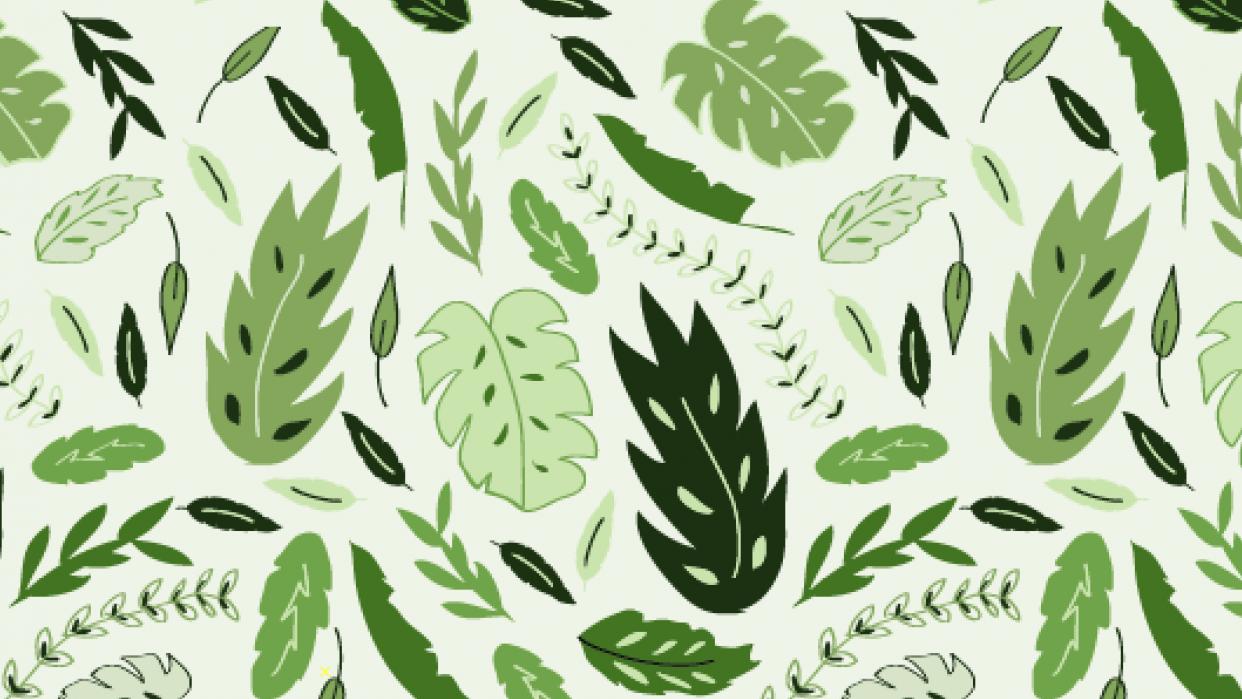 New Zealand Foliage - student project