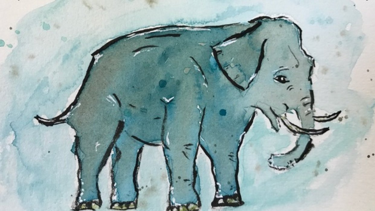 Elephant - student project