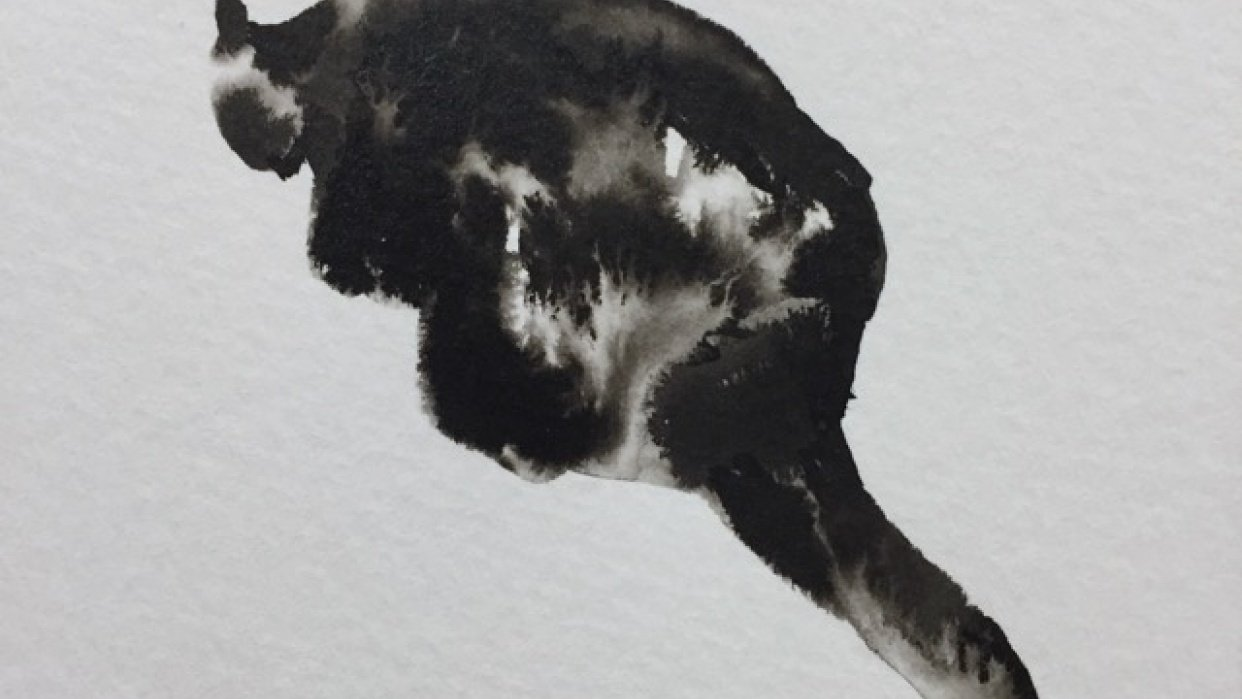 Wet ink animals - student project
