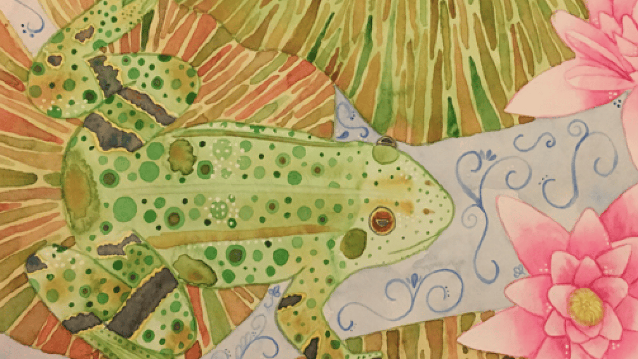 Lily Frog - student project