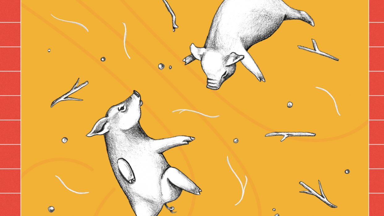 Three Little Pigs - Professional Practise  - student project